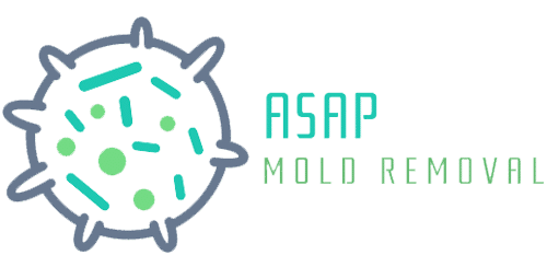 Asap Mold Removal